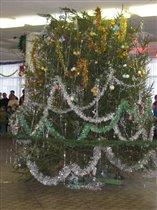 Самая красивая настоящая елка 2006 года