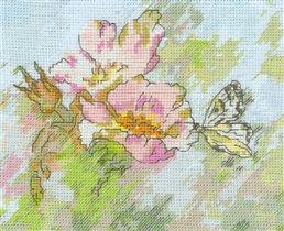 Бабочка на шиповнике