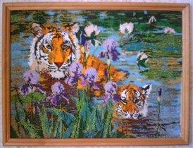 Тигры в озере