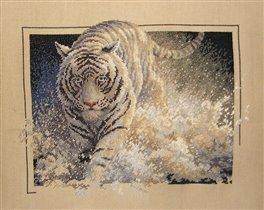 Тигр (в процессе)