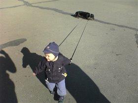 Как хорошо иметь щенооочка, чтобы водить его на поводоооочке!