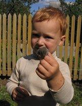 Артемкин друг -мышонок!!