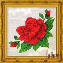 018_красная роза