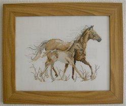 Лошади Ланарте