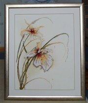 34786 Lanarte орхидея