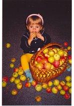 Яблок хватит всем!