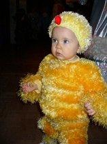 Вот такой цыпленок