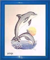 Dolphins (Vervaco)