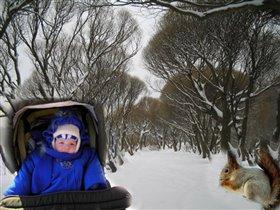 зимой на аллейке