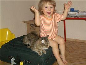 с кошкой на чемодане