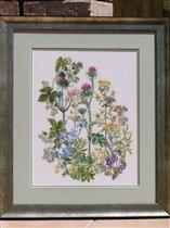 Garden Herbs от Thea Gouverneur или просто 'Сорняки'