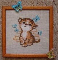 Котик с бабочками