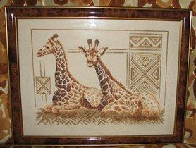 Жирафы (Золотое Руно)