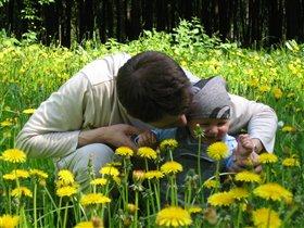 Соберем цветов мы сами, а потом подарим маме!
