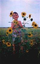 Подсолнухи - осколки солнечного дня... В подсолнухах попробуйте найти меня!
