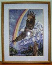 Дим орел