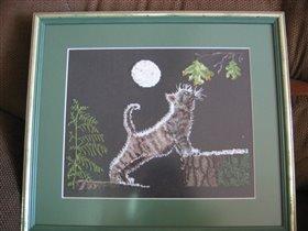 Moonlight Kitties
