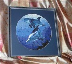 Дельфины в оформлении
