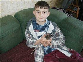 У нас крыска и хомяк. Эрику 9 лет.