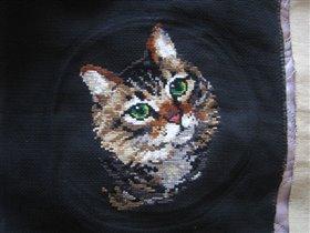 2. Кошка