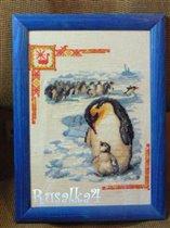 Пингвинчики.