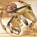 tribal ponies