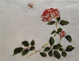 Роза от Беатрис