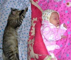 Всегда делюсь кроватью с другом