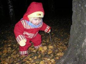 Ну, Дерево, берегись!