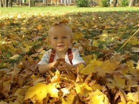 Листья жёлтые летят