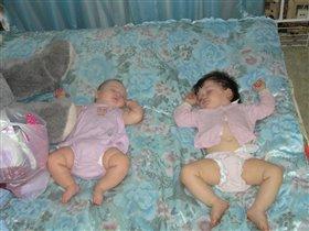 Спят ,дружно носиками сопят :)