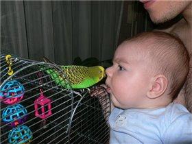 Сынок с попугаем Шуриком
