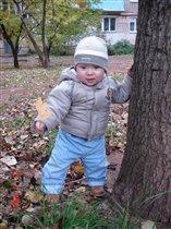 осень Мишастика:первые листочки