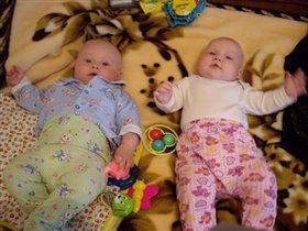 Два Макса и одна игрушка