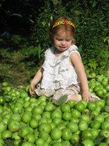Яблочная мечта