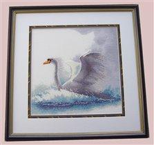 'Swan in flight',  Heritage