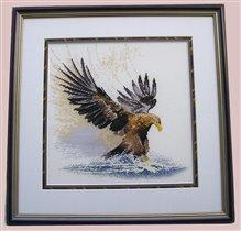 Eagle in flight, Heritage