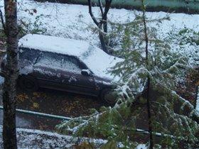 Вот так осень перешла в зиму...