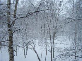 неожиданно выпал снег
