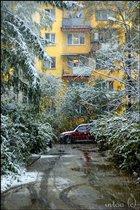 Хороводит снег с дождем (Фотоконкурс 'Зима за окном')
