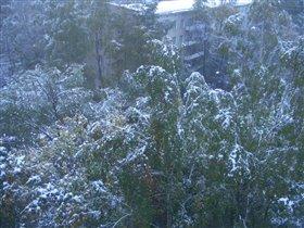 Первый снег 2007 года