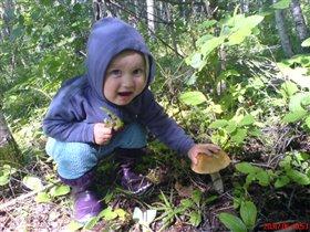 я нашел гриб!