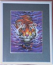 Тигр Dim