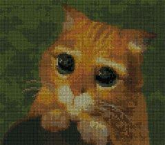 Кот из 'шрека'