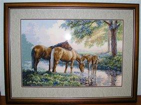 Лошадки Дим