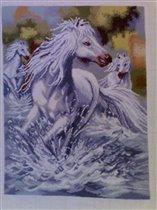 divi kone