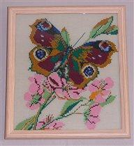 Бабочка-весна