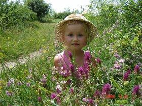 Фея полевых цветов
