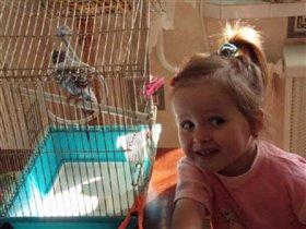 мой любимый попугай-Лерка