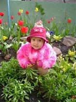 люблю цветы !!!